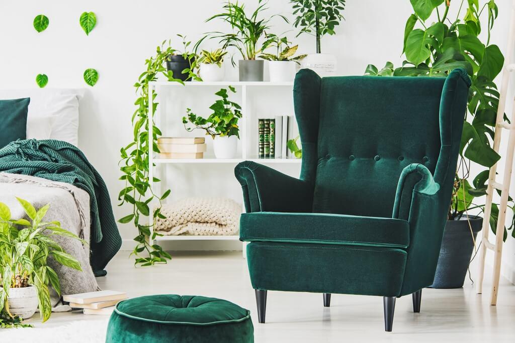 Urban jungle - różne odcienie zieleni